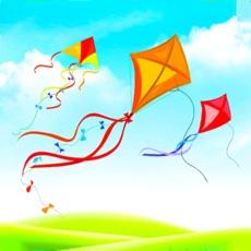 Activities of Real Kite Flying Simulator