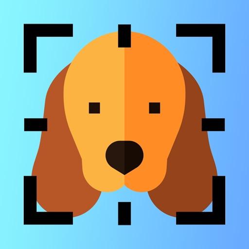 Dog Breed Identifier AI