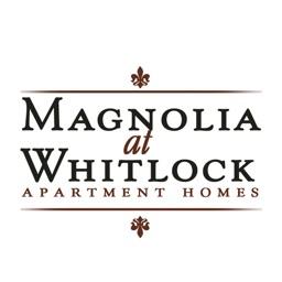 Magnolia at Whitlock