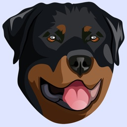 My Rottweiler
