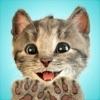 小さな子猫 - 私の好きな猫 (3+)