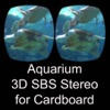 Aquarium Videos for Cardboard