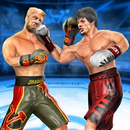 Real Punch Boxing Revolution