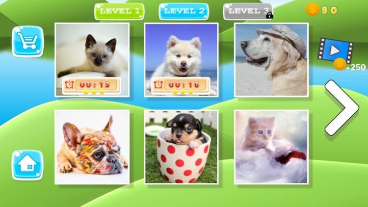 Puzzle Pets Dogs Cats Game screenshot-4