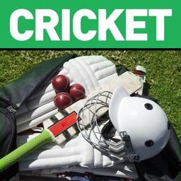 Cricket Summer Guide