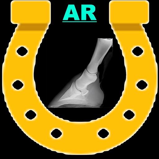 AR Horses Xrays Helper