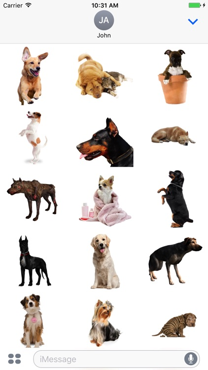 Dogs Stickers Pack