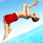 Flip Diving pour pc