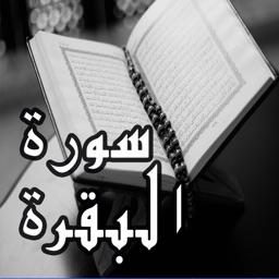 تحميل سوره البقره علي بن عبد الرحمن الحذيفي
