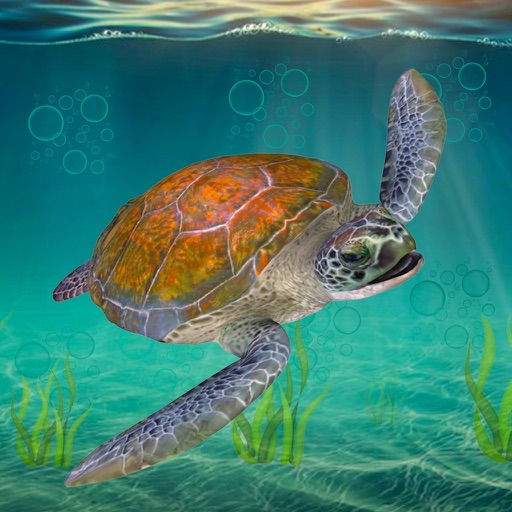 Sea Turtle Survival Sim Games iOS App
