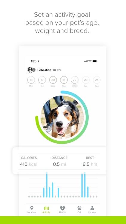 Whistle: Smart Pet Tracker