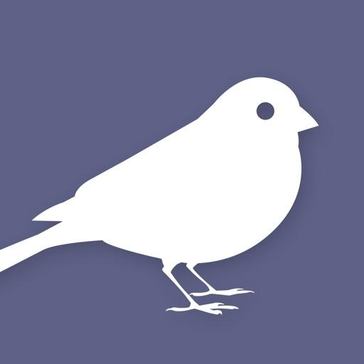 EyeLoveBirds: Bird sightings