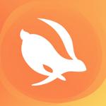 Turbo VPN приватный браузер на пк