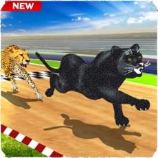 Activities of Crazy Wild Black Panther Race