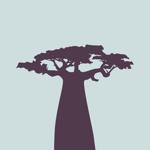 Baobab App pour pc