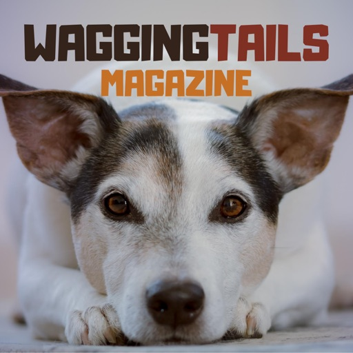 Wagging Tails Magazine