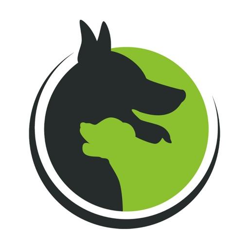 Doguniversity: Hundetraining