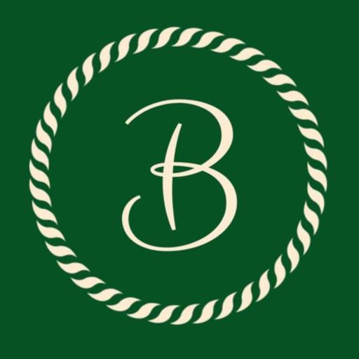 Bilingy icon
