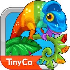 Activities of Tiny Zoo Friends