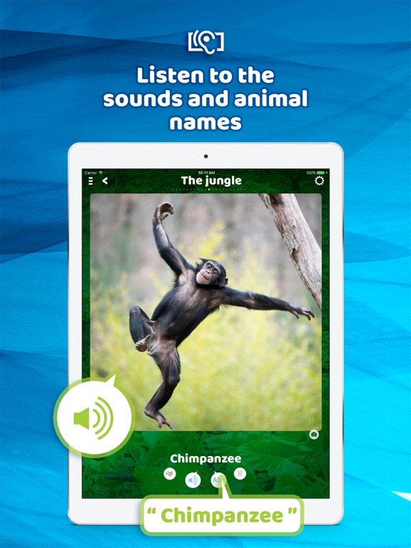 Animal sounds - Images, Noises Скриншоты8