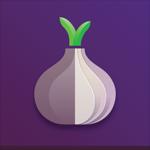 Torsec Browser на пк