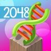 Evolution 2048 Puzzle Deluxe