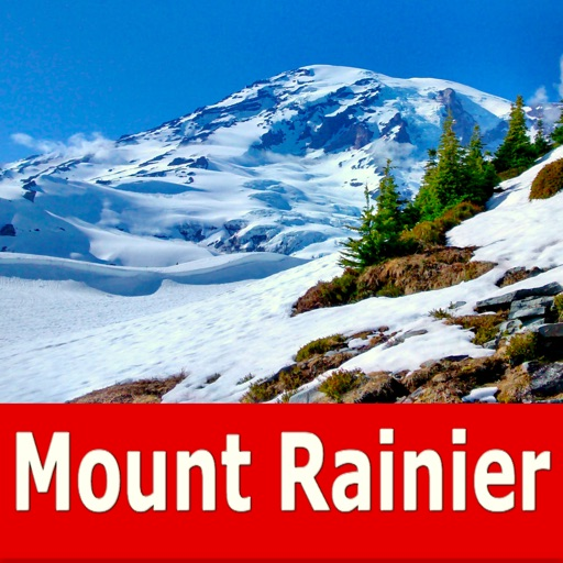 Mount Rainier National Park!