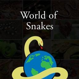 Amazing World Of Snakes