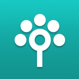 Songtree - Music Maker