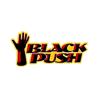 BlackPush Inc