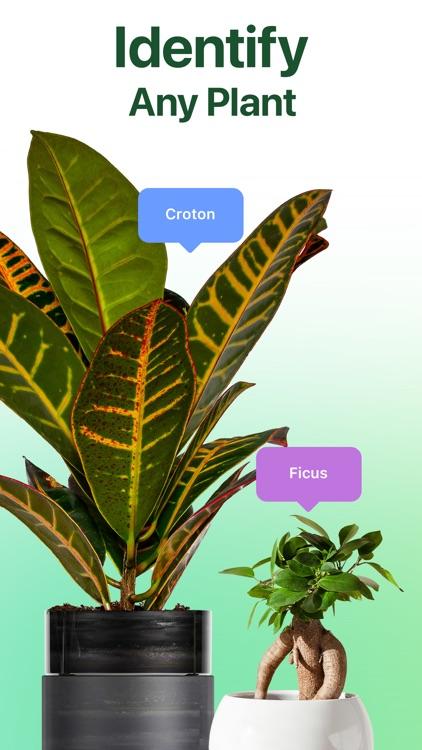 NatureID: Plant Identification screenshot-0