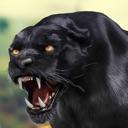 Cheetah RPG Jungle Simulator