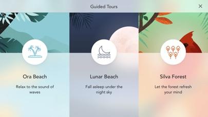 Sonus Island: リラックスした音 screenshot1