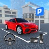 Real Car Parking 3D Pro