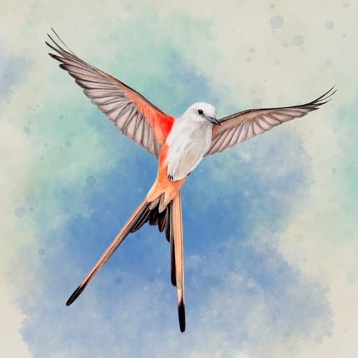 Wingspan icon