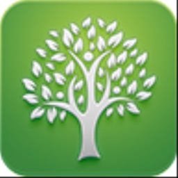 Tree: Christian Social Network