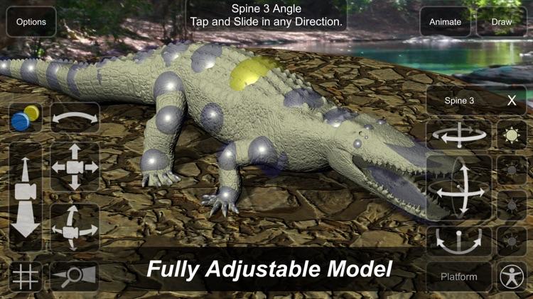 Crocodile Mannequin