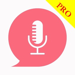 Intelligent voice helper Pro