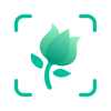 Glority Global Group Ltd. - PictureThis - Plant Identifier  artwork