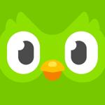 Duolingo pour pc