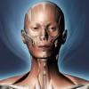 DS ANATOMY HEAD & NECK (AppStore Link)