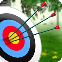 Archery Master Target Shooter