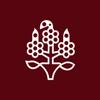 SHIROYAMA KANKO CO.,LTD. - SHIROYAMA HOTEL kagoshima アートワーク