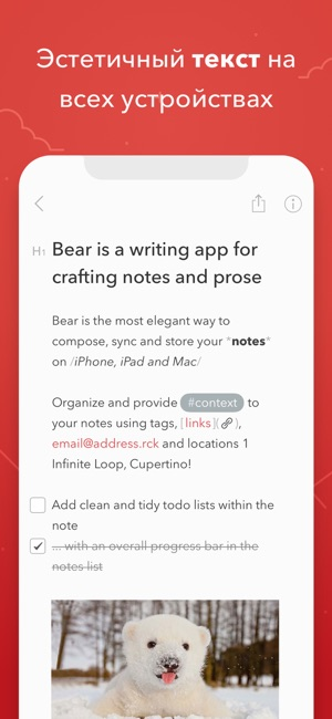 Bear Writer Screenshot