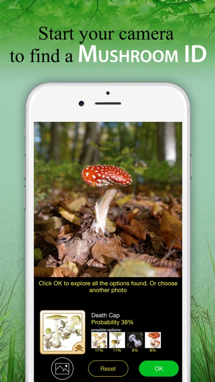 Mushroom Identification &Guide screenshot-0