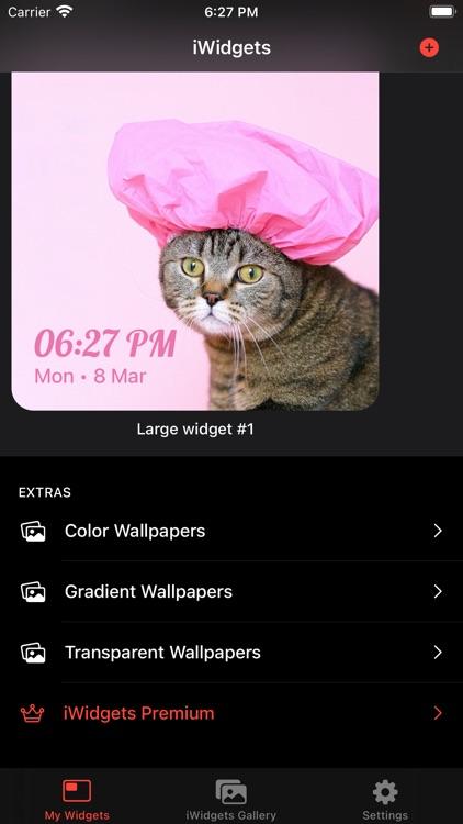 iWidgets Pro screenshot-4