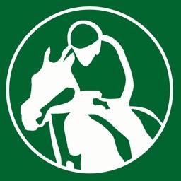 Horse Racing Tracker - Tips