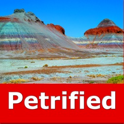Petrified Forest N. Park