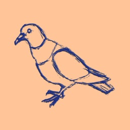 Pigeon Pass