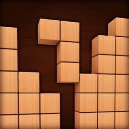 Fill Wooden Block: Wood Puzzle
